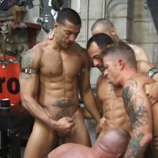 Muscle Piss Pigs