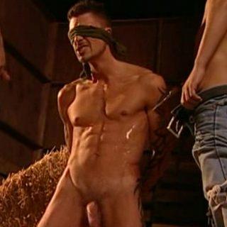 Pissing Guys: Damien Crosse, Sergio Anthony and Tamas Eszterhazy